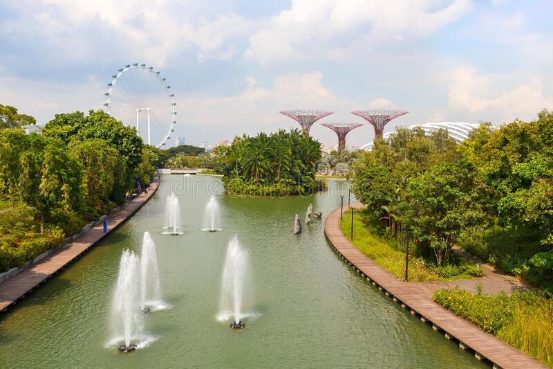 新加坡 — 2019年11月25日:新加坡滨海湾公园喷泉、巨轮和花园的超级树林 免版税库存照片