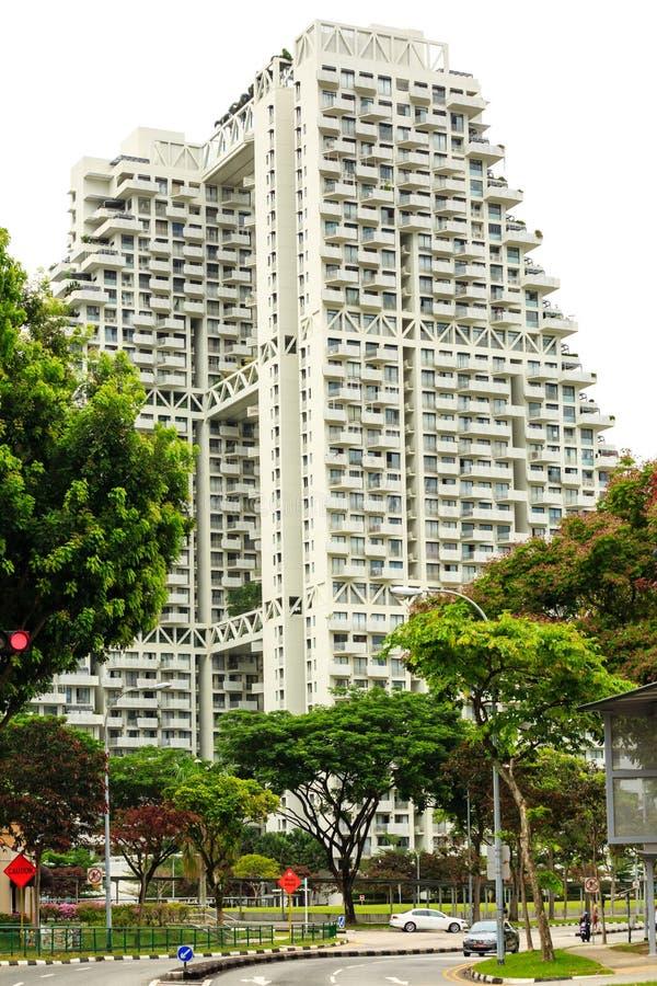 新加坡30 2019年3月:新加坡天空栖所从街道边的公寓房视图 免版税库存照片