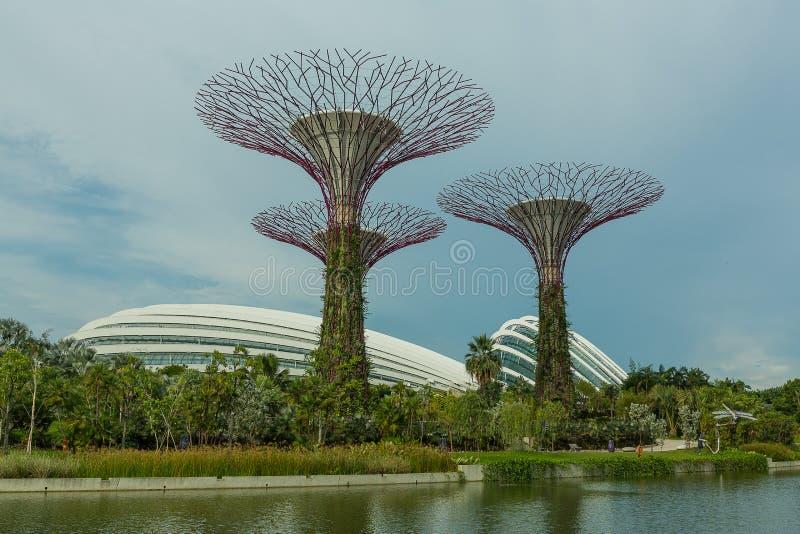 新加坡- 5月12 :2014年3月12日的滨海湾公园在Singap 免版税库存照片