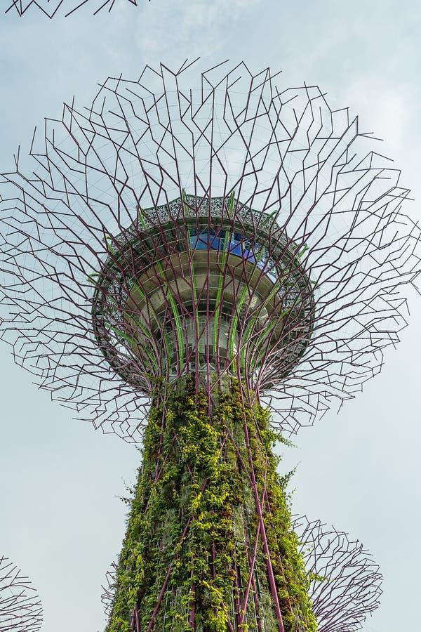 新加坡- 5月12 :2014年3月12日的滨海湾公园在Singap 库存照片