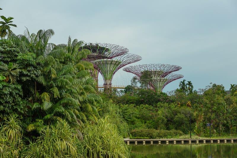 新加坡- 5月12 :2014年3月12日的滨海湾公园在Singap 免版税图库摄影