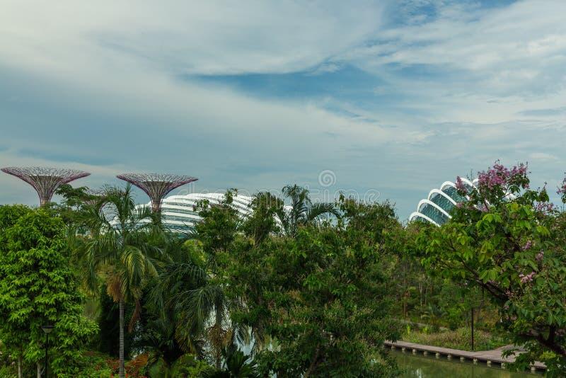 新加坡- 5月12 :2014年3月12日的滨海湾公园在Singap 图库摄影