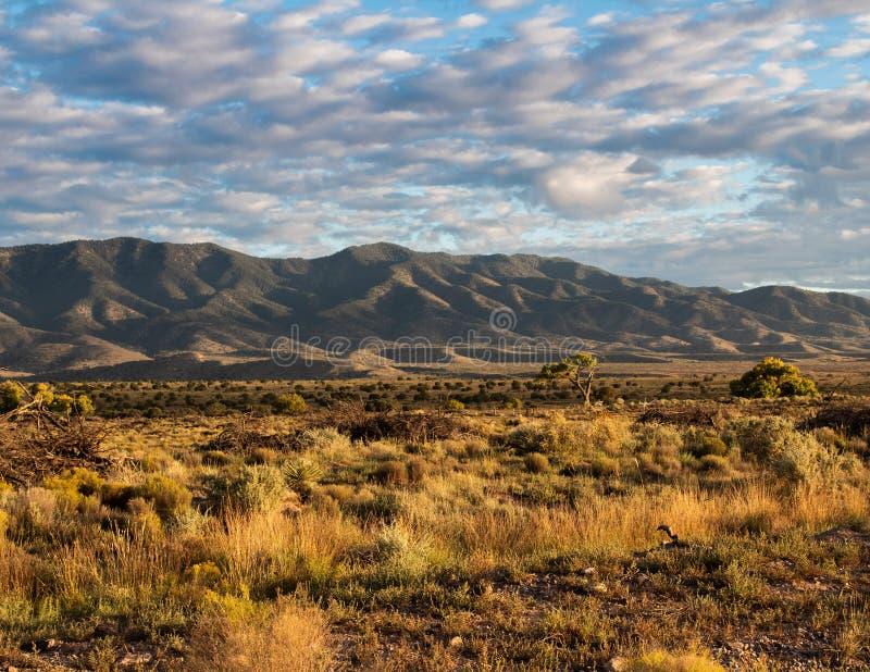 新墨西哥沙漠和山风景 免版税库存照片