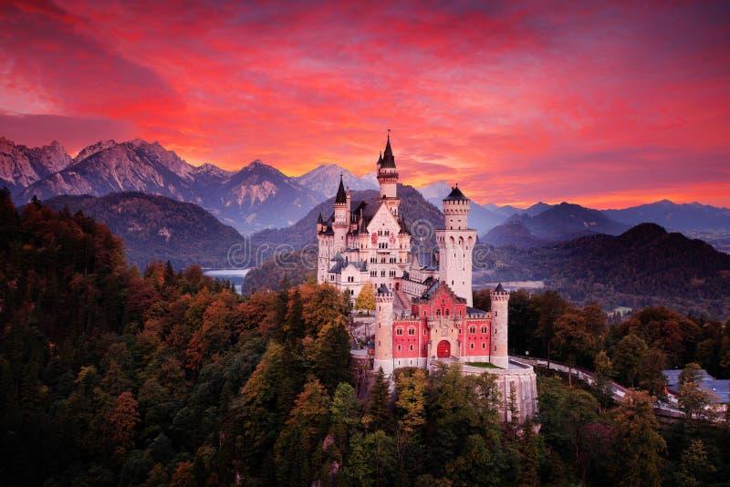 新天鹅堡童话城堡 血淋淋的云彩的美好的日落视图与秋天颜色的在树,暮色夜,巴伐利亚 免版税库存照片