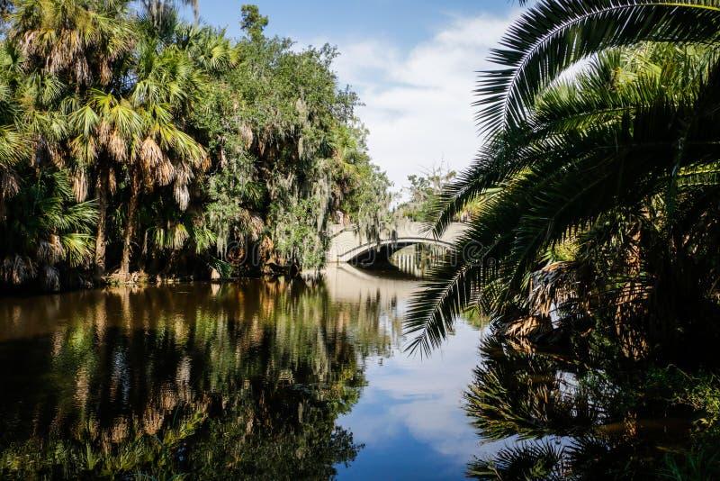 新奥尔良市公园多沼泽的支流 库存照片