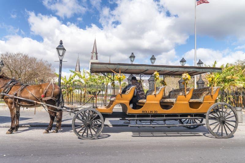 新奥尔良- 2016年1月:马支架在杰克逊广场 Th 免版税库存照片