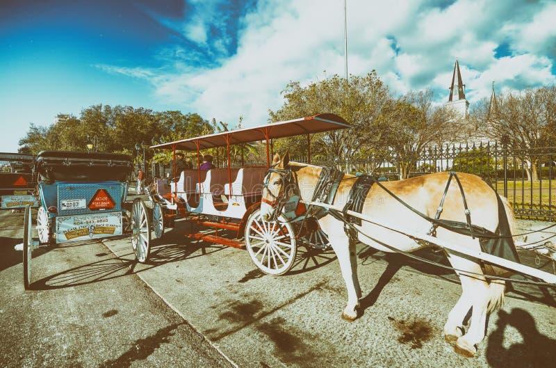 新奥尔良- 2016年1月:马支架在杰克逊广场 Th 免版税库存图片