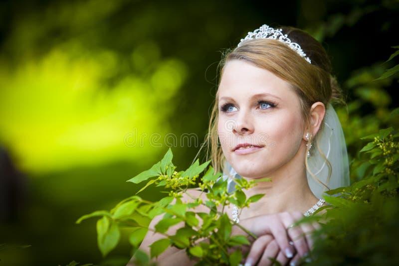 新娘俏丽的结婚照  图库摄影