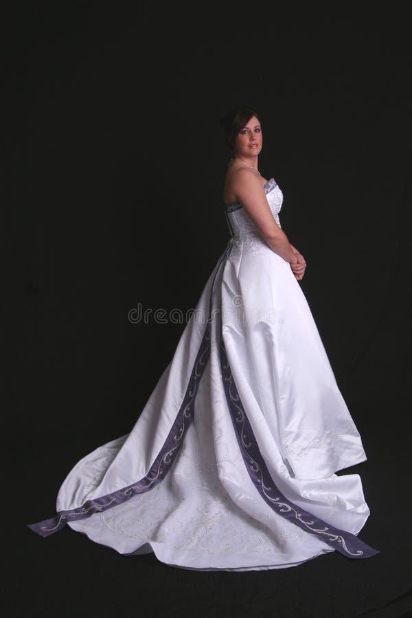 新娘典雅的纵向 库存图片