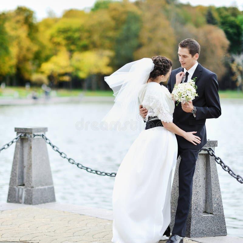 新娘和新郎。婚礼夫妇 免版税库存照片