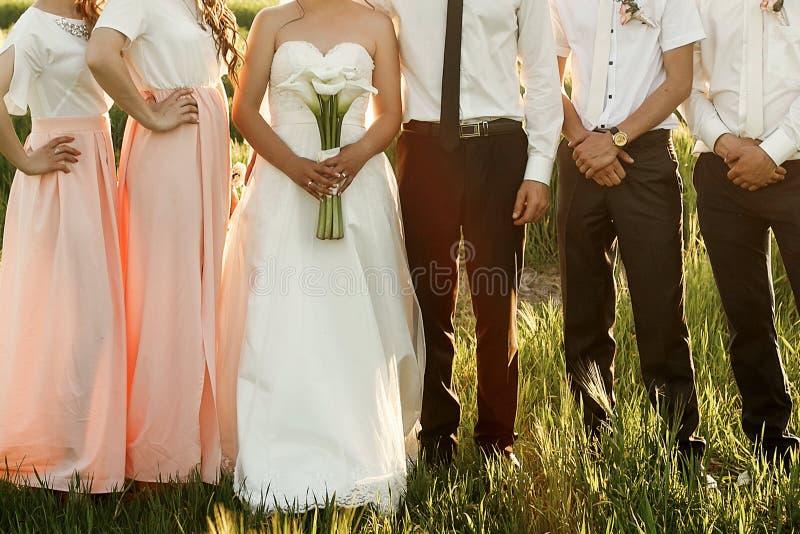 新娘和新郎与摆在sunligh的女傧相和男傧相 免版税库存图片