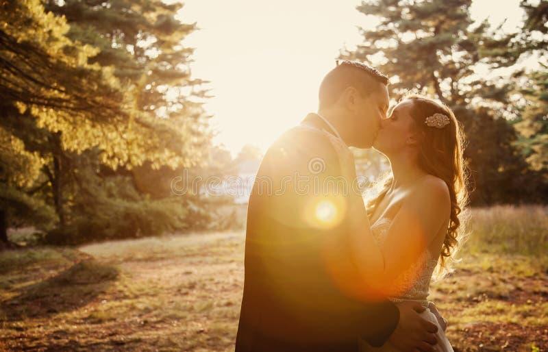新娘和新郎亲吻在阳光下 免版税库存图片