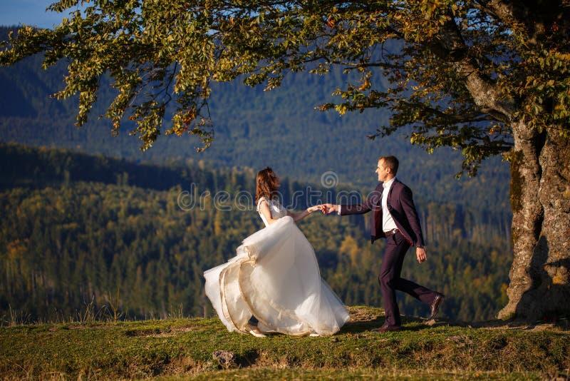 新娘和新郎在喀尔巴汗,山, 免版税库存照片