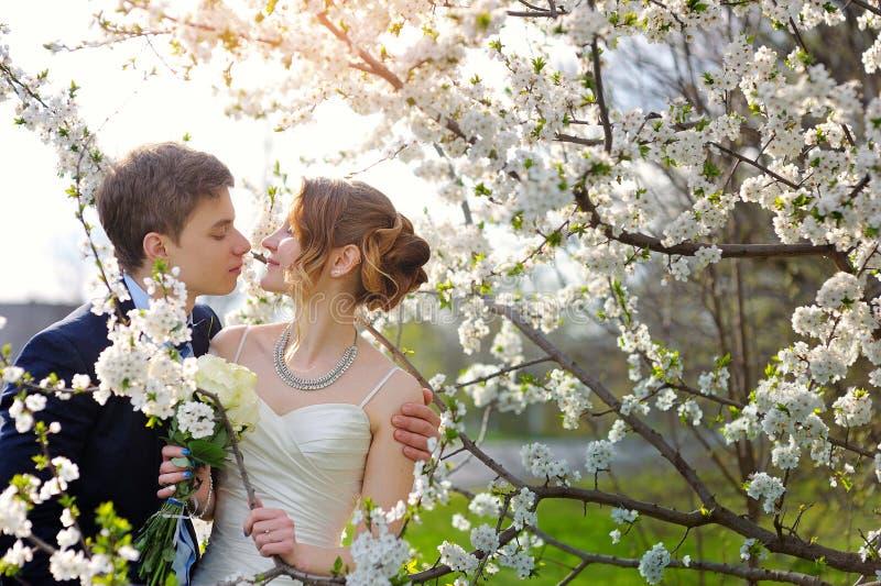 新娘和新郎在婚礼亲吻在春天步行停放 免版税库存照片