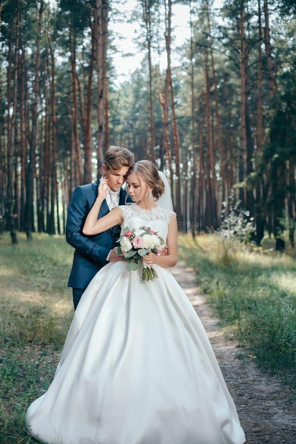新娘和新郎在婚礼礼服在自然本底 衣物夫妇日愉快的葡萄酒婚礼 新婚佳偶通过森林走 免版税库存图片