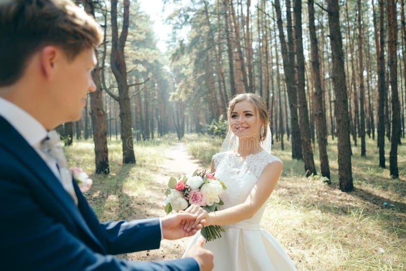 新娘和新郎在婚礼礼服在自然本底 衣物夫妇日愉快的葡萄酒婚礼 新婚佳偶通过森林走 免版税库存照片