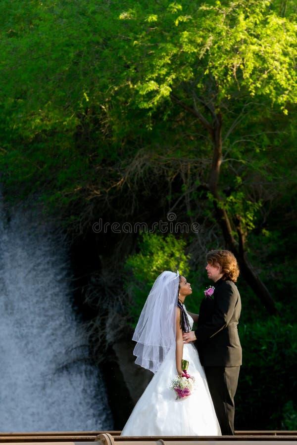 新娘和新郎在瀑布前面 免版税库存照片