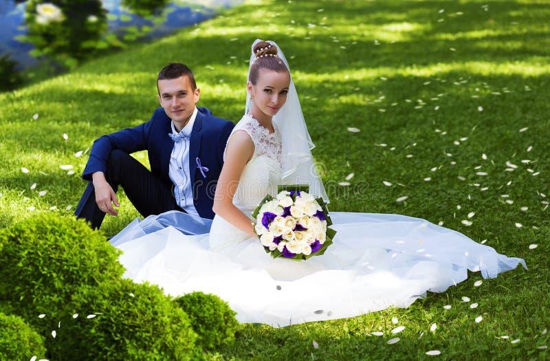新娘和新郎坐草在湖附近 库存图片