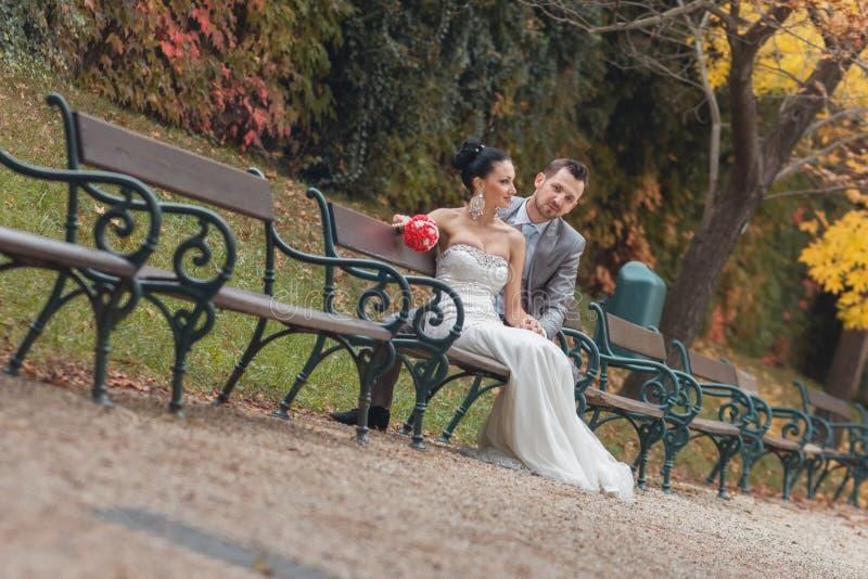 新娘和新郎坐长凳在公园 免版税库存照片