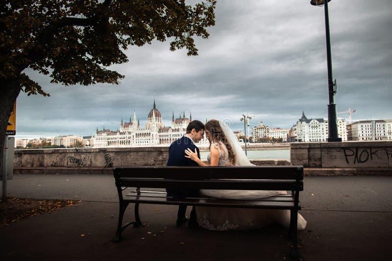 新娘和新郎坐长凳在河附近在老城市 除草在布达佩斯 免版税库存照片