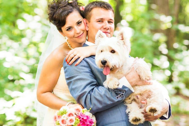 新娘和新郎婚礼与室外狗的夏天 库存照片