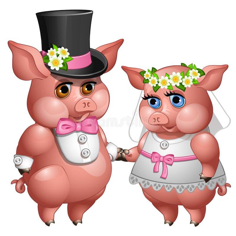 新娘和新郎猪婚姻在婚礼衣服的 向量例证