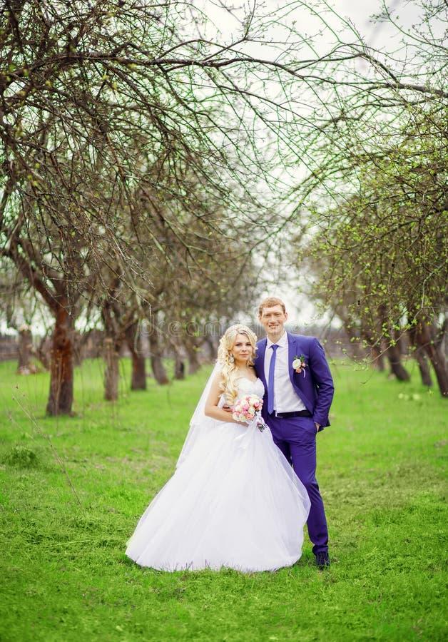 新娘和新郎的结婚照在春天从事园艺 免版税库存照片
