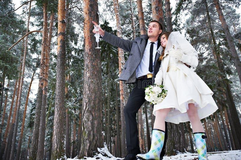 Download 新娘和新郎戴香槟眼镜在冬天森林里 库存照片. 图片 包括有 愉快, gumboots, 杉木, 新郎, 夫妇 - 30336998