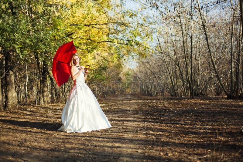 新娘在童话森林里在秋天 免版税库存图片