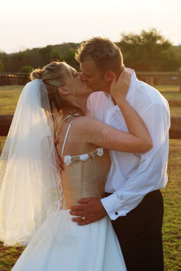 新娘夫妇 免版税库存图片