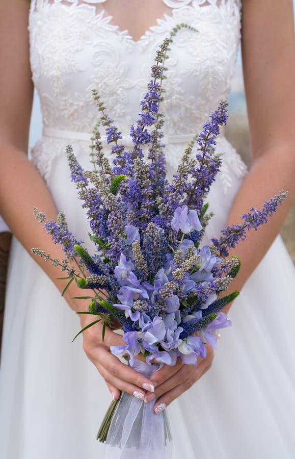 新娘拿着紫色花和草本典雅的婚姻的花束  库存图片