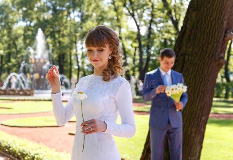 Download 年轻新娘撕下春黄菊瓣告诉时运 库存图片. 图片 包括有 浪漫, 幸福, 言情, 丈夫, 结婚, 微笑, 绿色 - 59100597