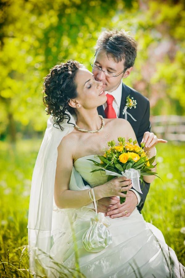 新娘新郎亲吻的公园 免版税库存照片
