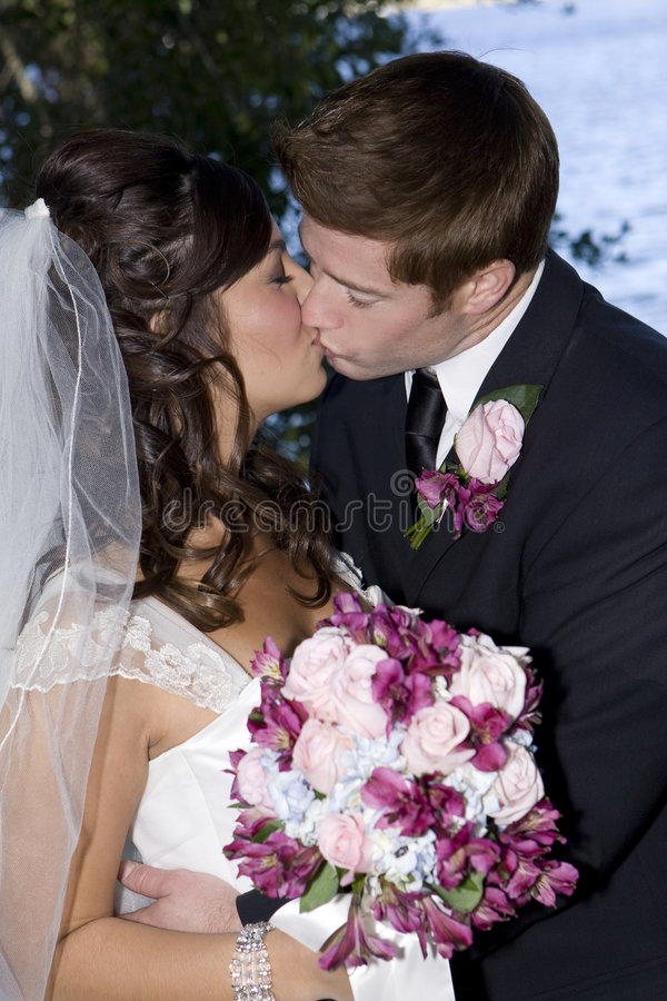 新娘新郎亲吻 免版税库存照片