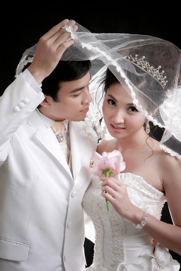 新娘新郎他对年轻人的查找的纵向 免版税库存照片