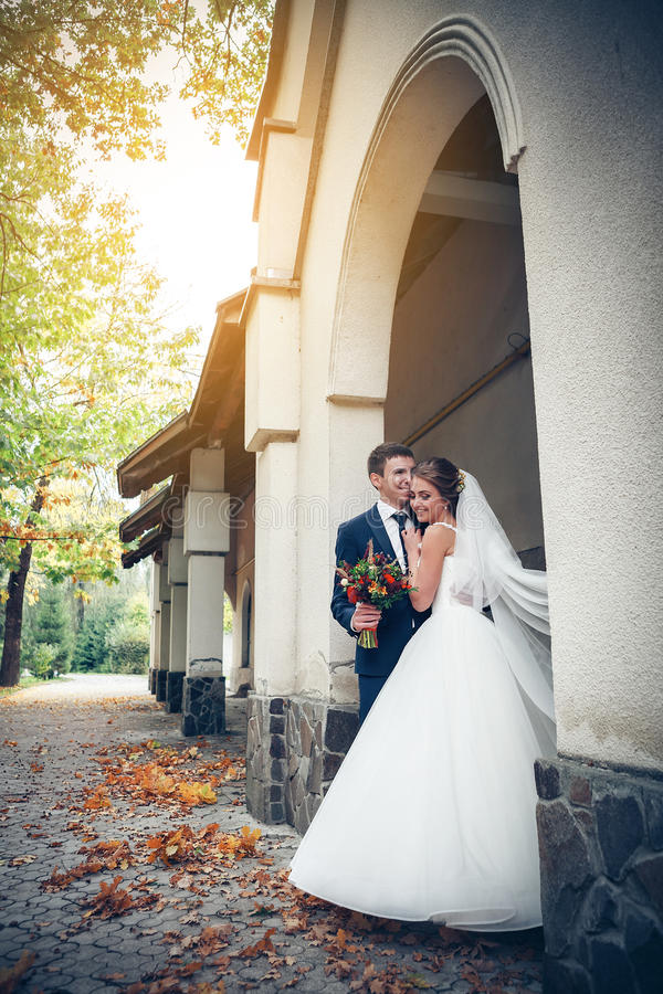 新娘日新郎婚礼 免版税库存图片