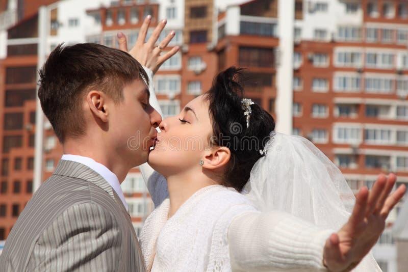 新娘未婚夫亲吻室外 免版税图库摄影
