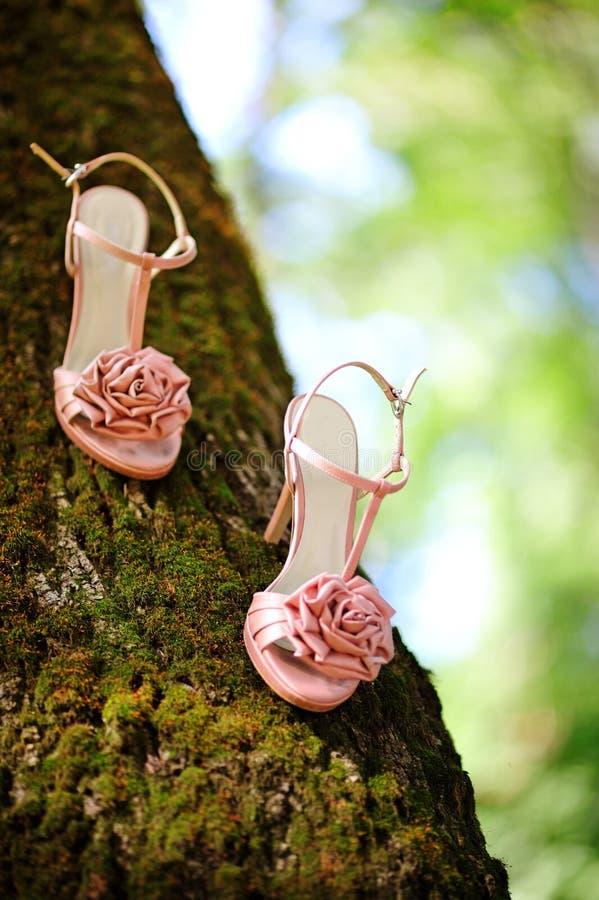 新娘桃红色鞋子 图库摄影