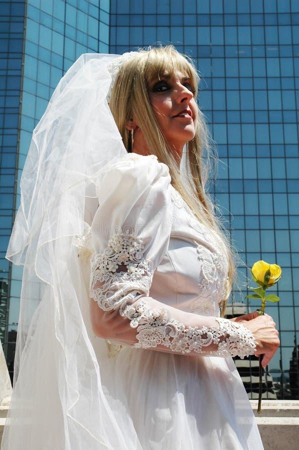 新娘照片写真 免版税图库摄影