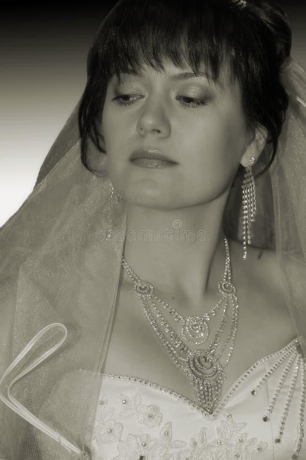 新娘的纵向 免版税库存图片