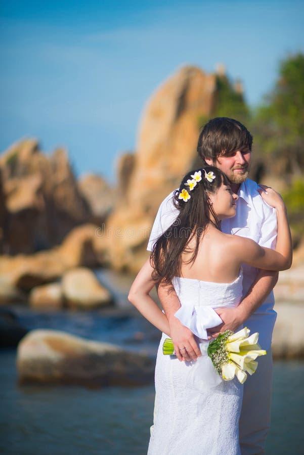 新娘轻轻地拥抱美好的风景背景的新郎  免版税库存图片