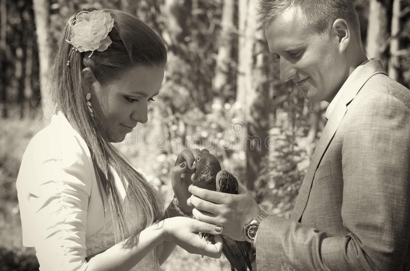新婚佳偶加上鸽子 库存图片