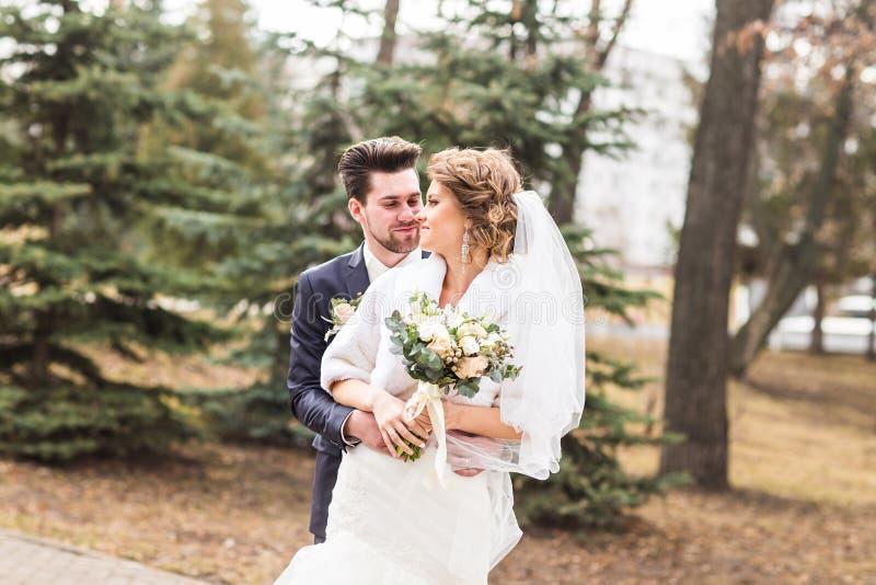 新婚佳偶在秋天停放,拥抱他的新娘的新郎 图库摄影