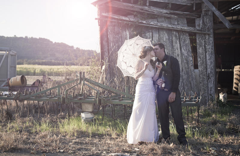 新婚佳偶夫妇亲吻 库存照片