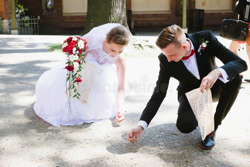新婚佳偶收集婚礼客人投掷的硬币 免版税图库摄影