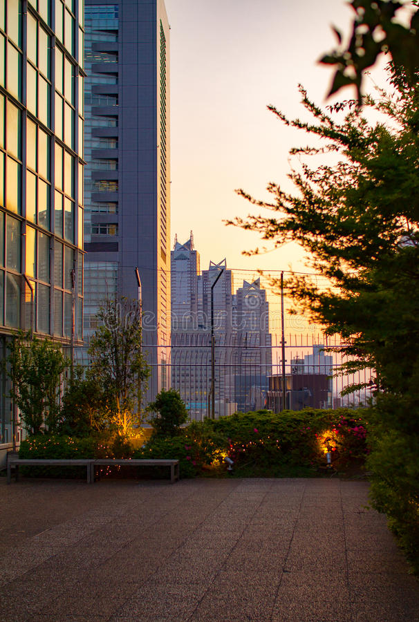 新宿屋顶视图 图库摄影