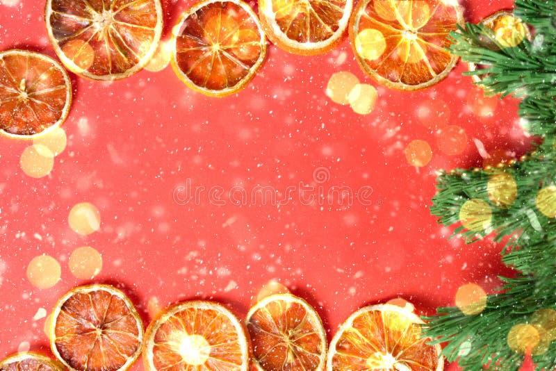 新年卡片用干桔子,绿色圣诞树,飘动 免版税库存图片