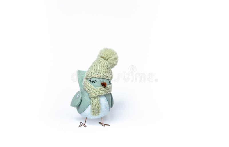 新年在白色背景的` s鸟 库存照片