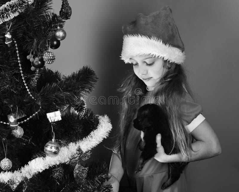 新年狗概念 圣诞老人小姐拿着小犬座 库存图片