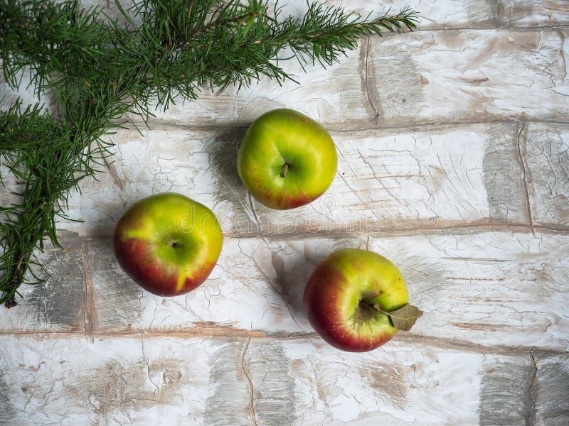 新年贺卡,苹果,落叶松属小树枝在仿效砌的背景的 库存照片